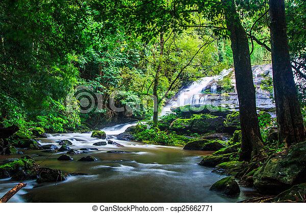 Pha Dok Xu waterfall at Doi Inthanon National park in Chiang Mai