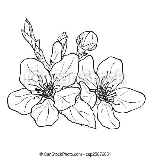 cliparty wektorowe wi nia kwiat rysunek kwiaty kwiat wi nia csp25676651 szukaj. Black Bedroom Furniture Sets. Home Design Ideas