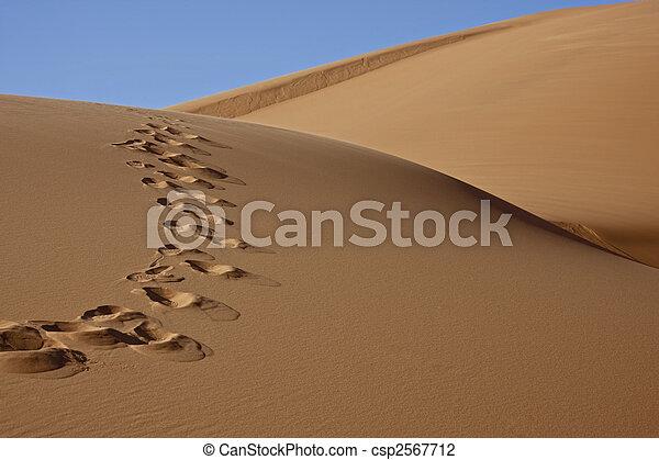 footprints in desert sand - csp2567712