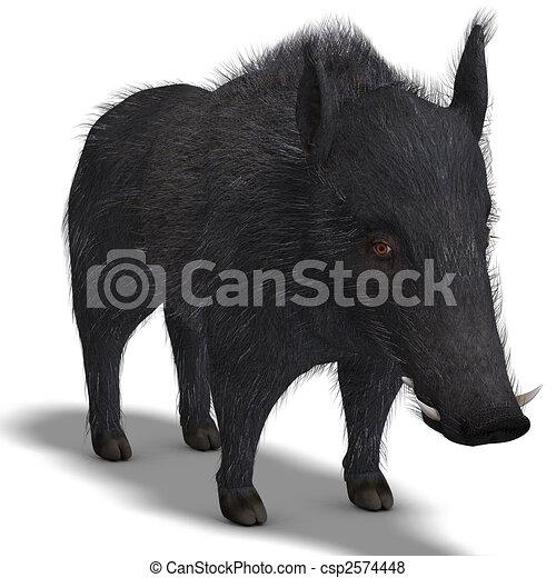 dangerous black boar is stiff-bristled - csp2574448