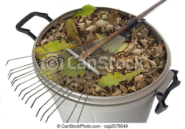 rake and dry leaves in garbage bin - csp2578549