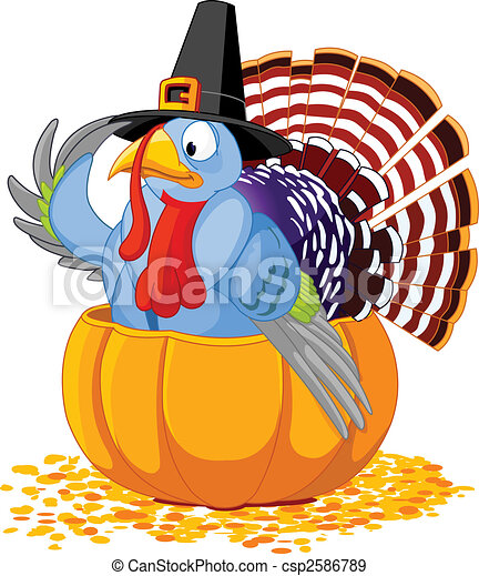 Pilgrim Turkey in pumpkin - csp2586789