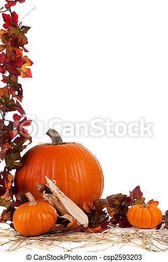 Border of Assorted sizes of pumpkins on hay on white - csp2593203