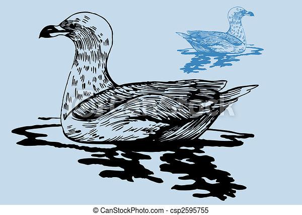 Seagull Pond - csp2595755