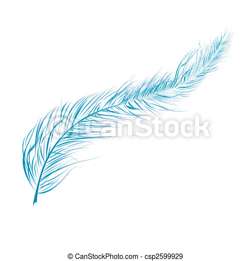 Blue feather - csp2599929