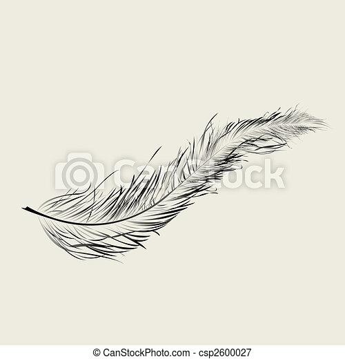 illustrations de flaoting plume graphic plume art illustration csp2600027 recherchez des. Black Bedroom Furniture Sets. Home Design Ideas