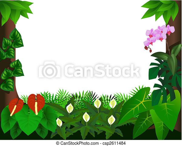 Forest background - csp2611484