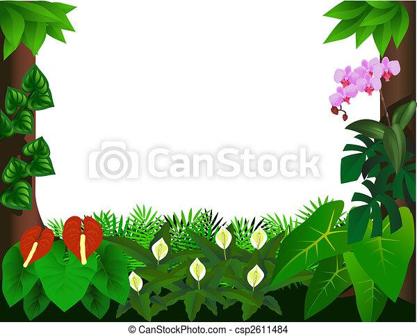 Forest background - csp2611484
