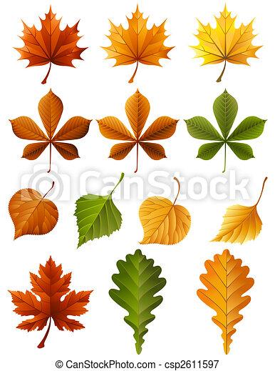 autumn leaves - csp2611597