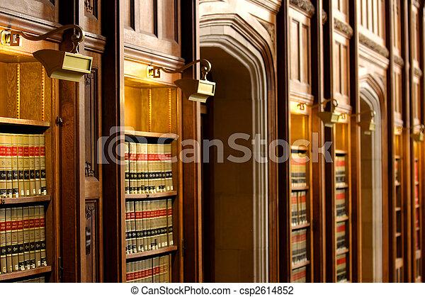 lei, livro, biblioteca - csp2614852