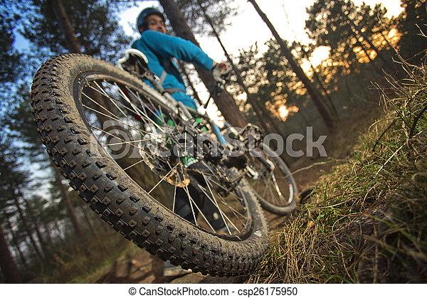 MTB cyclist on outdoor trail