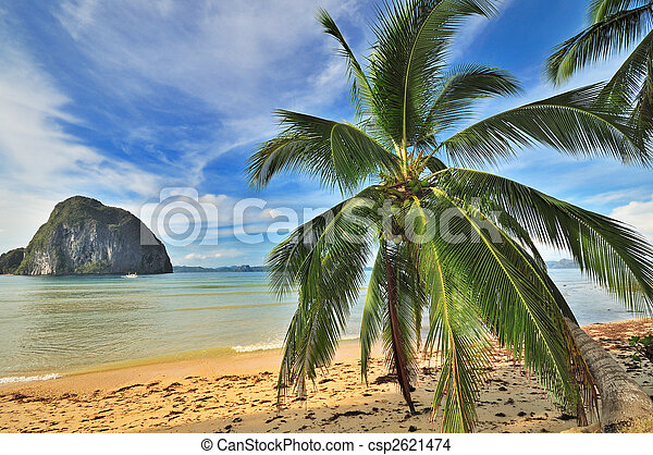 Bounty Paradise - csp2621474