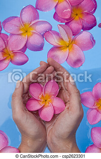 Hands and Frangipanis in a Spa Pool - csp2623301
