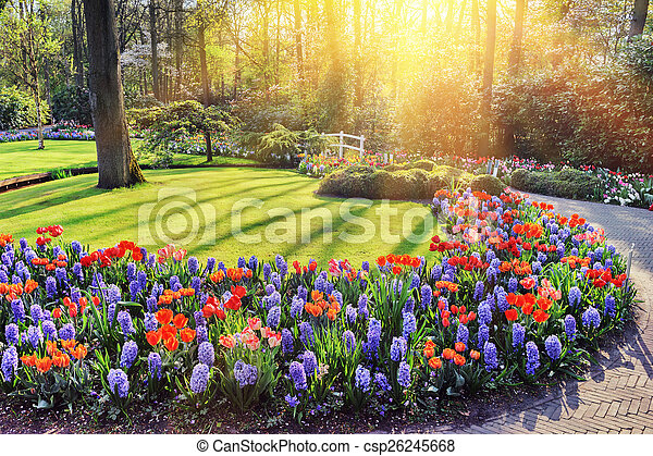 Spring landscape with colorful flowers at sunny day
