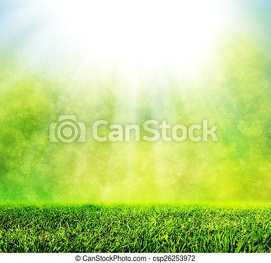 Green spring grass against natural nature blur. Sunny morning light