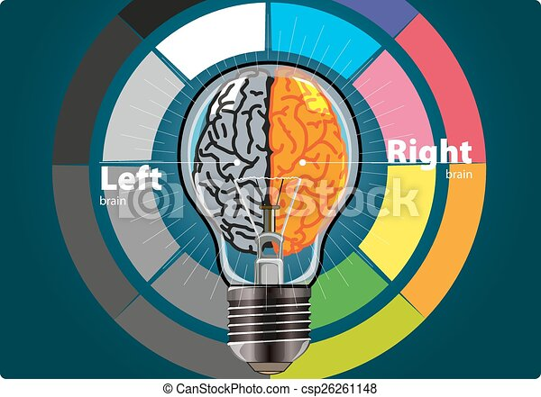 left brain and right brain - csp26261148