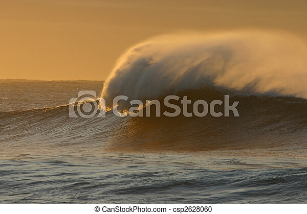 Spray plume of a large winter wave at dawn.