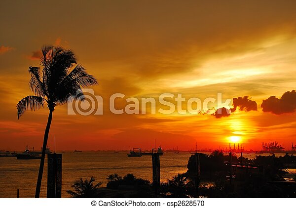 Tropical sunset with coconut tree near the sea - csp2628570