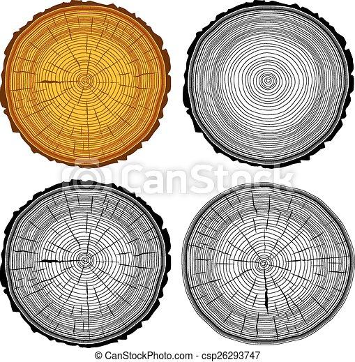 Tree Ring Drawings Set Tree Rings Saw Cut Tree