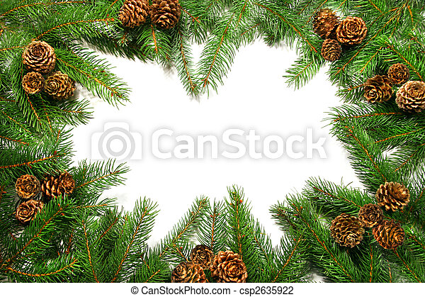 Branches with pine cones against white - csp2635922