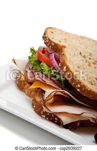 Turkey sandwich on whole grain bread - csp2639227