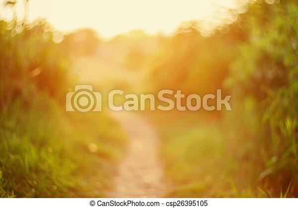 De focused path on sunset