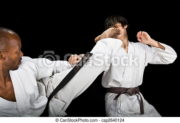 Karate fight - csp2640124