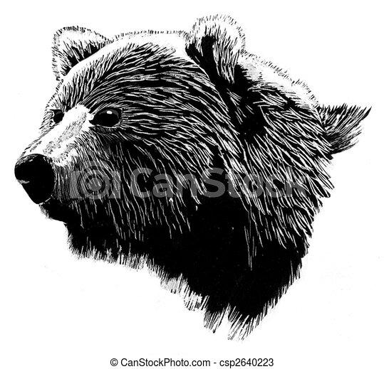 Brown Bear Head - csp2640223