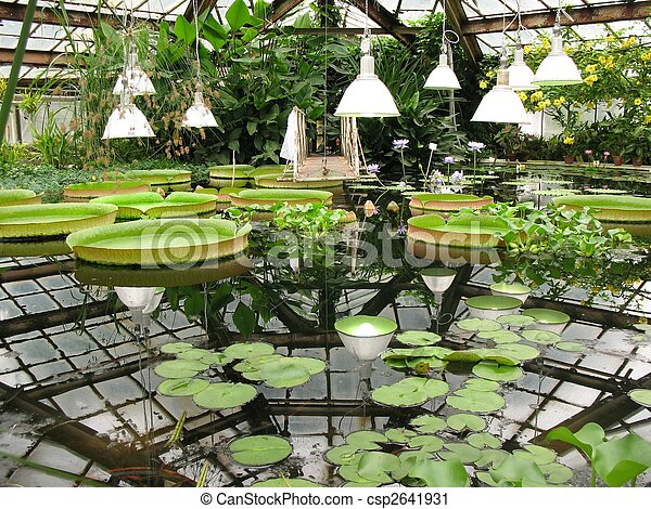 Water greenhouse of the Botanical Garden. - csp2641931