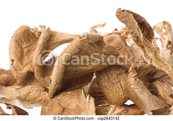 Dried Edible Mushrooms - csp2643142