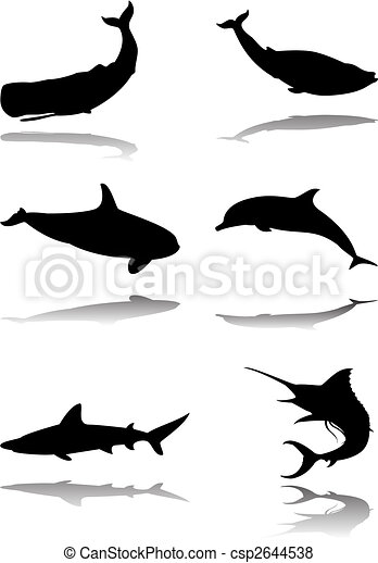 Set of marine animals - csp2644538