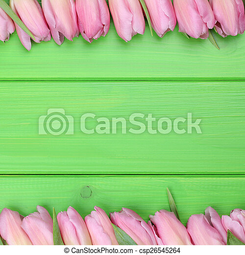 Frame from tulips flowers in spring or mothers day
