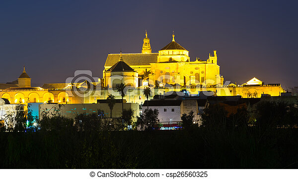 Cathedral of Our Lady of the Assumption in night time.  Cordoba - csp26560325