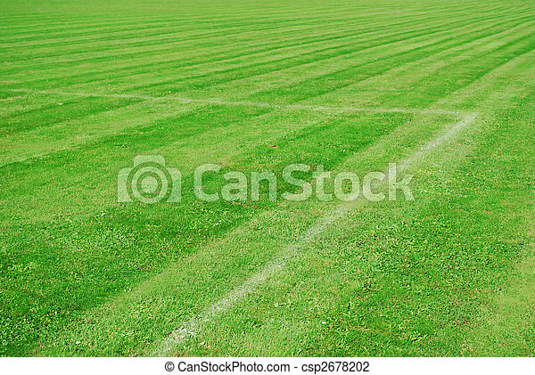 green football pitch with white lines and a parallel pattern - csp2678202
