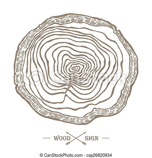 Tree Ring Drawings Vector Vector Tree Ring