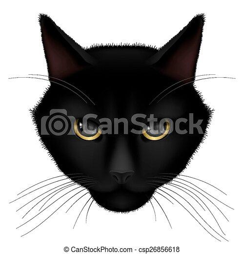 Back of cat head