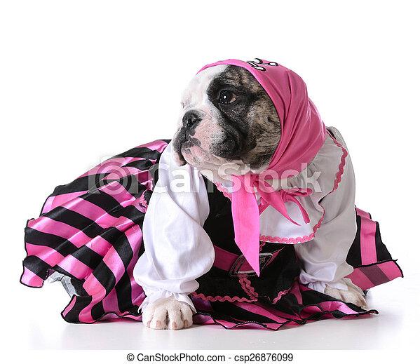 pirate puppy - csp26876099