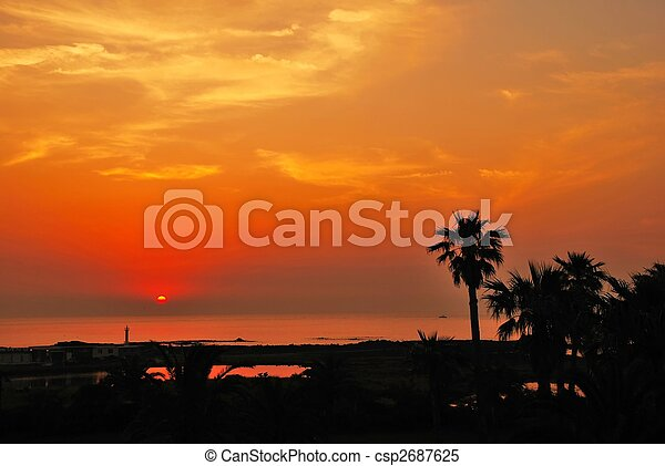 Tropical sunset with coconut tree near the sea - csp2687625