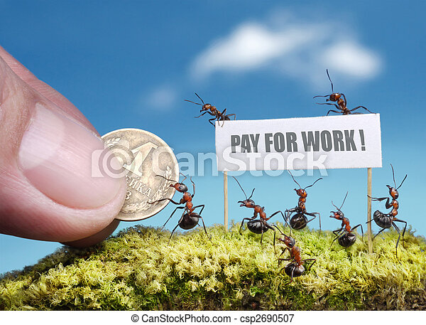 ants demand payment for work - csp2690507