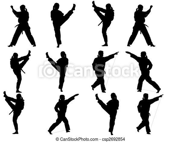 taekwondo fighter - csp2692854