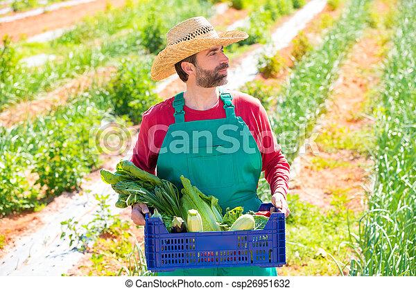 Farmer man harvesting vegetables in orchard - csp26951632
