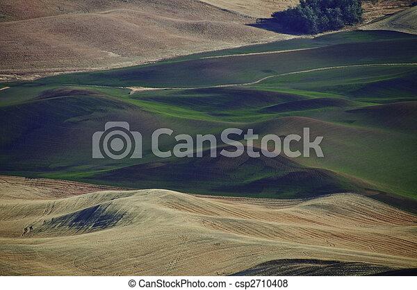 Winter Wheat - csp2710408