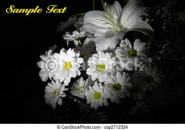 Beautiful white flowers - csp2712324