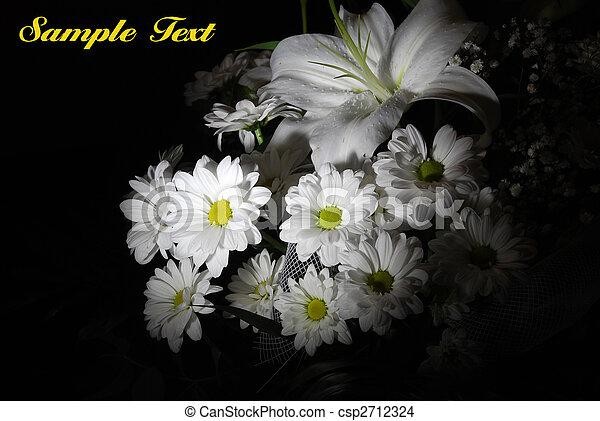 Beautiful white flowers - csp2712324