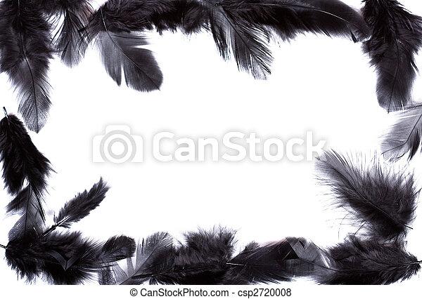 images de cadre de noir plume exotique doux beau noir plume csp2720008 recherchez. Black Bedroom Furniture Sets. Home Design Ideas