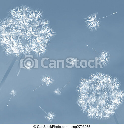 Dandelions in the wind - csp2723955