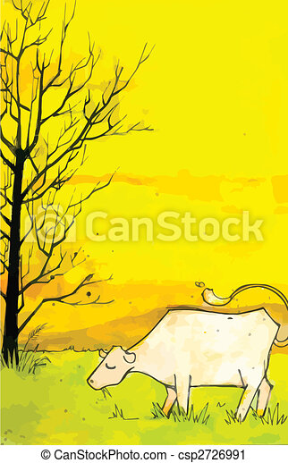Cow in a field - csp2726991