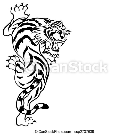 Abstract Tiger Line Drawing   Photo#3