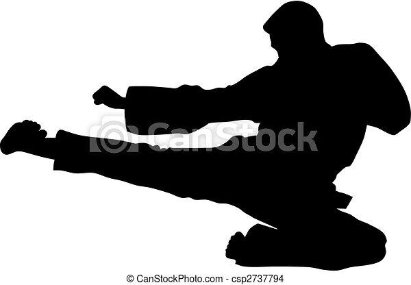 Martial Art - csp2737794