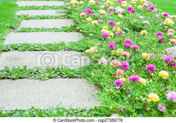 image de jardinage, chemin, fleurs - chemin, à, jardinage, fleurs
